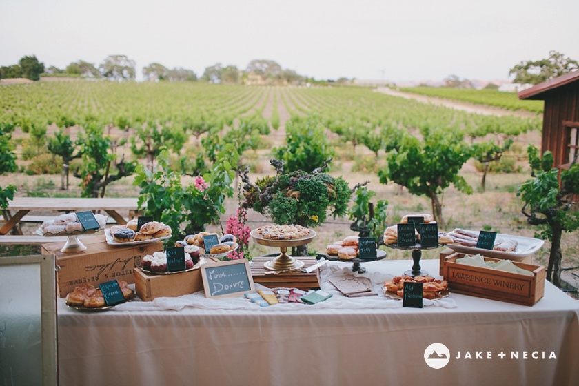 Jake and Necia Photography: Castoro Cellars wedding | Paso Robles (6)