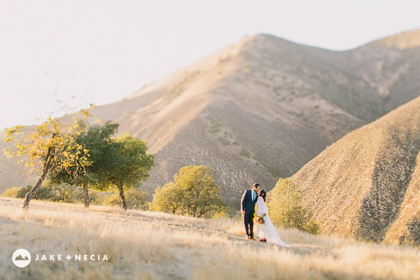 Figueroa Mountain Farmhouse wedding by Jake and Necia Photography (25)