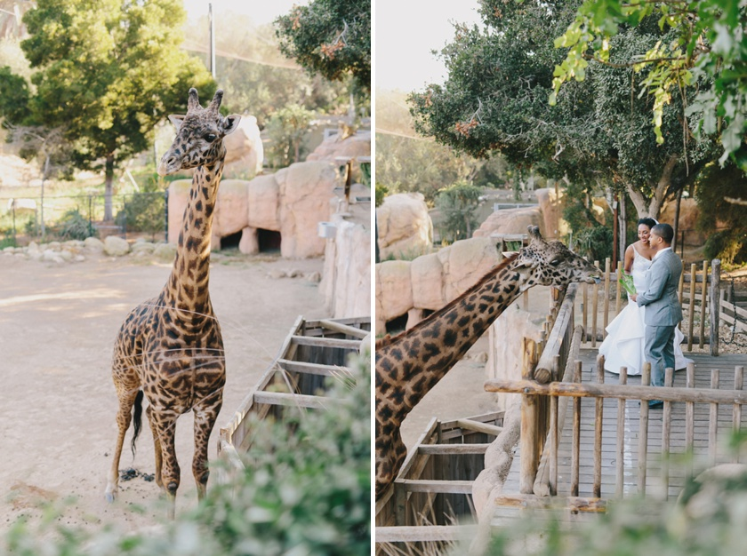 Santa Barbara Zoo Wedding (5)